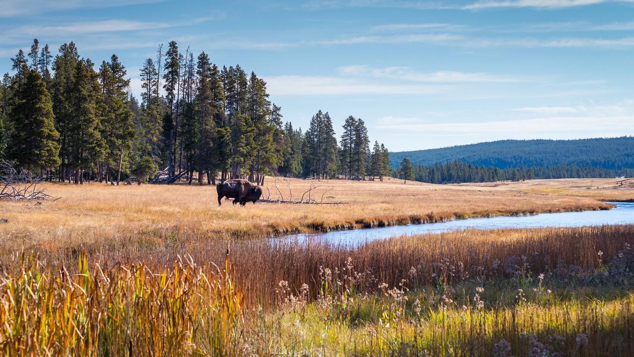 """Alla scoperta del Wyoming: Benvenuti nella natura selvaggia del """"Far West"""""""